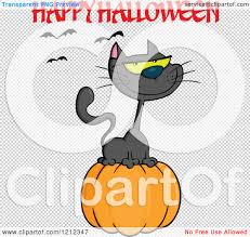 small halloween witch with no background cartoon of a happy halloween greeting and bats over a black cat on