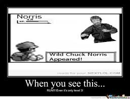 Chuck Norris Pokemon Memes - chuck norris pokemon by jarl of winterhold meme center