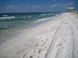 Louisiana beaches images Dramatic impacts on beach microbial communities following the jpg