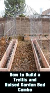 best 25 pea trellis ideas on pinterest squash varieties bamboo