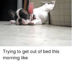 Get Out Of Bed Meme - brits feel grumpy and tired if they get out of bed on the left side