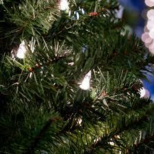 shop living 4 ft pre lit arctic pine artificial