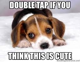 Cute Puppies Meme - double tap if you think this is cute cute puppy dog meme generator