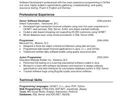 illustrious visual basic resume statement tags visual resumes