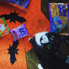 Halloween Kitty by Gluten Free Halloween Candy List Gfjules