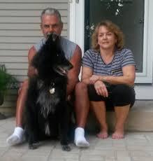 belgian sheepdog rescue texas belgian sheepdog rescue trust home facebook