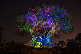 tree of awakens in disney animal kingdom time show hd