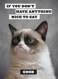 Good Grumpy Cat Meme - grumpy cat 2 jpg