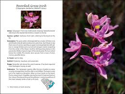 south carolina native plants books jim u0027s blog