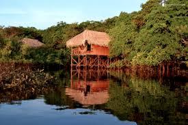 bungalow lodges in amazon rainforest near manaus