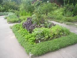 herb gardening for a healthy you herbs garden and gardens