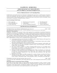 business resume templates modern business coach resume template resume coach