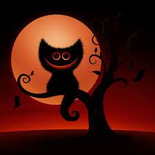 halloween cat eyes wallpaper bootsforcheaper com