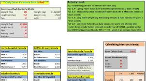 as 6 melhores tabelas excel para dietas musculacao net