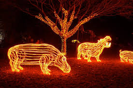 oregon zoo lights 2017 zoolights oregon zoo
