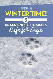 5 best pet safe ice melt safe for pets in 2017 pet friendly ice melt