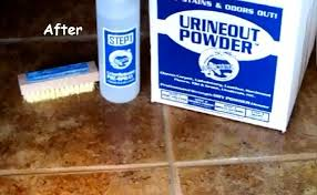 cleaning urine stains and odors on ceramic tile and grout planet