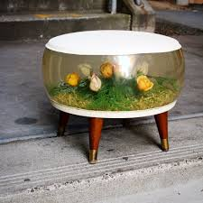 furniture remarkable terrarium coffee table with aquarium grass