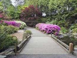 21 of the best botanical gardens to visit this spring