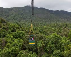 Above The Canopy by Research Daintree Rainforest Observatory James Cook University