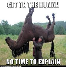 No Time To Explain Meme - animal capshunz get on funny animal pictures with captions