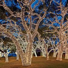 retama park christmas lights tianyu acrobats at holiday festival of lights retama park satx