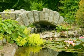 ornamental bridge and pond stock photo image of sand leaves 985476