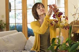 How To Make Roses Live Longer In A Vase Simple Tips To Make Fresh Cut Flowers Last Longer Daily Mail Online