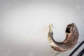 shofar trumpet shofar on a tallit ancient musical trumpet made of ram s horn