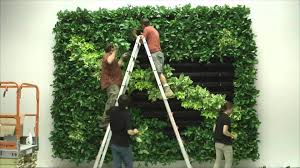 Garden Wall Systems by Wall Of Life Foliage Designs Systems 2 Living Green Walls Youtube