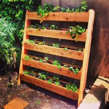 i built this vertical strawberry garden out of cedar fence pickets