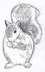 drawing animals free download clip art free clip art on