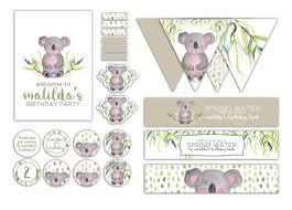 119 koala images koalas animals koala bears