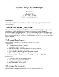 resume resume objective server server resume objective sles
