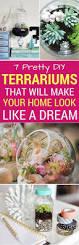 best 25 diy terrarium ideas on pinterest terrarium terrarium
