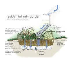 native plant landscaping ideas photos of rain gardens rain garden graphic simulation from
