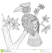hornbill bird on the tree zentangle design for coloring book and