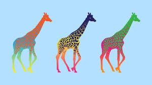 giraffe cartoon wallpaper 2560x1440 9296