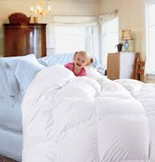 Goose Down Comforter Queen Amazon Com Cuddledown 233 Thread Count Down Comforter Queen