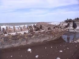 a shipwreck in miankaleh