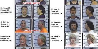in crossville tn nine arrested in felony up in crossville monday