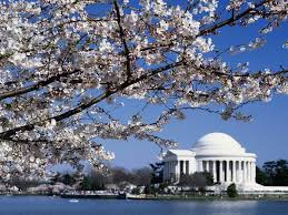 most beautiful places in the usa most beautiful places in america what to see in the united