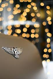 bentley motors logo 125 best whips images on pinterest dream cars car and dreams