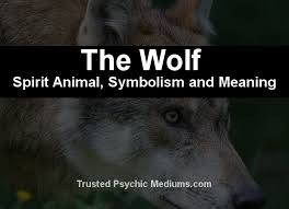 the wolf spirit a complete guide to meaning and symbolism