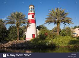 lighthouse and palm trees beside a lake disney vacation club