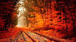 imagenes de otoño para fondo de escritorio el fondo de escritorio otoño para windows 7