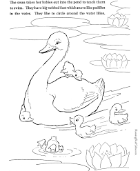 swan coloring print color pictures color