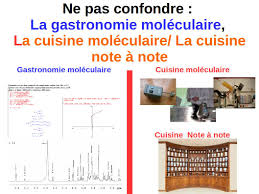 cuisine scientifique gastronomie moléculaire l exploration scientifique de la cuisine