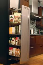 pull out racks for kitchen cabinets home design ideas