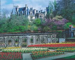 azaleas garden traveler